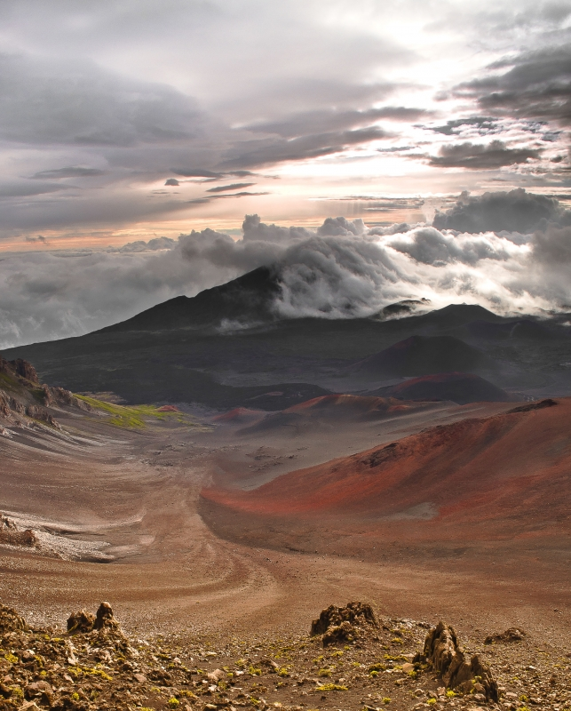 Morning Light