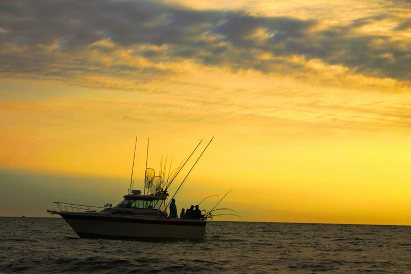 Lake Ontario Salmon Fishing