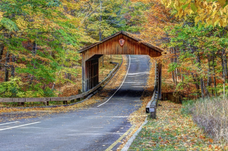 Covered Bridge In Sleeping Bear Np