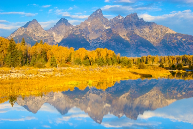 Fall Colors At Dawn At The Tetons