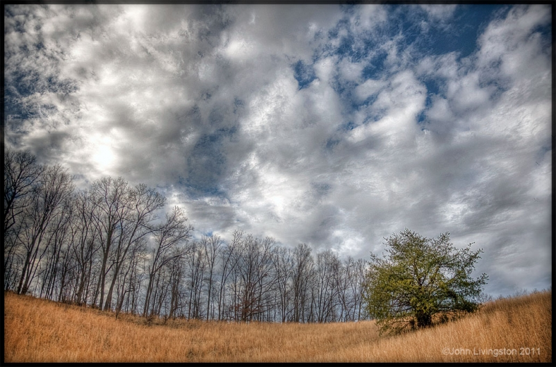 Clouds, Woods And Grass