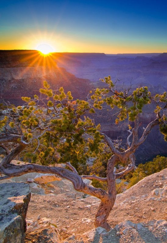 Sunset On Yavapai Point, Grand Canyon Ntl Park, Az