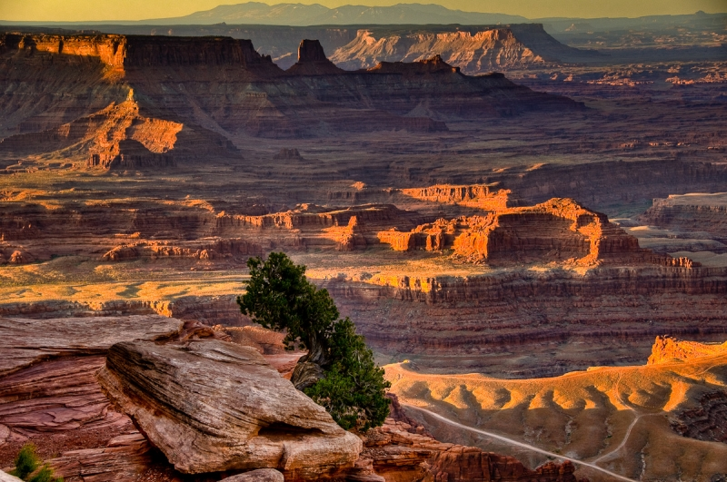 Dead Horse Point At Dawn