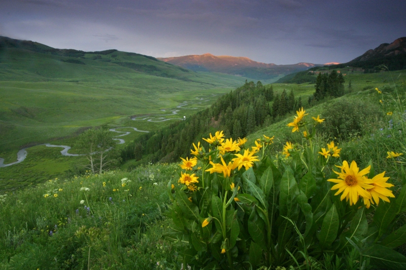 East River, Crested Butte, Co