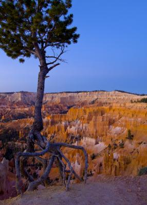 Bryce Canyon – Sunrise Point