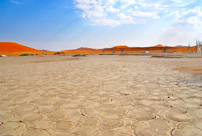 Dry Pan In The Namib Desert