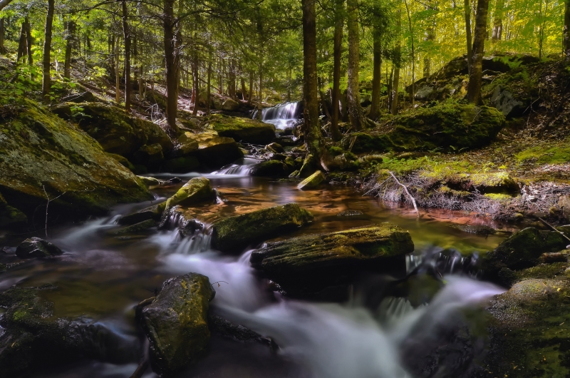 Logans Falls – Forest County Pennsylvania