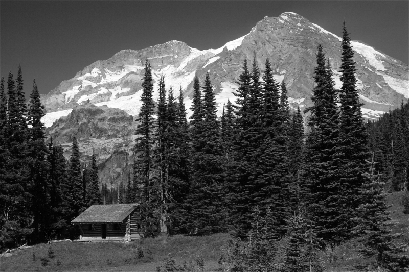 Mt. Rainier From Indian Henrys Hunting Ground