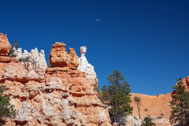Bryce Day Moon