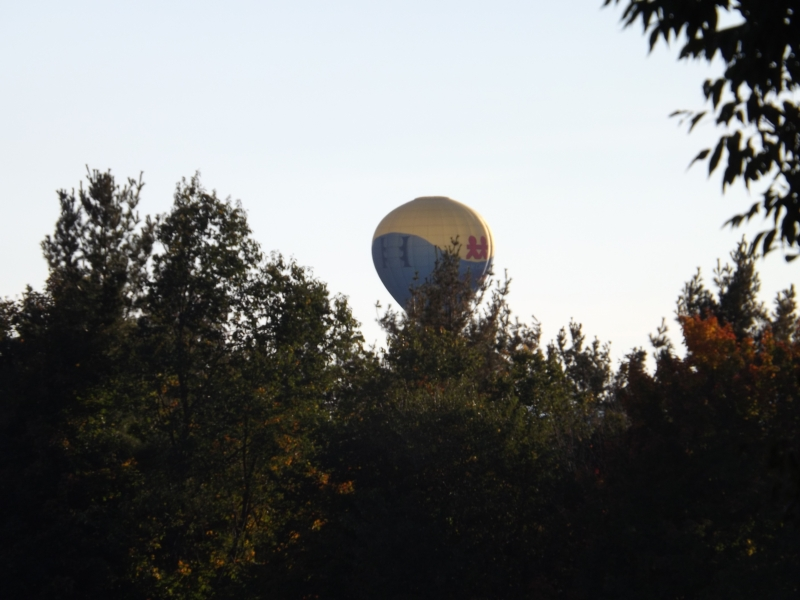 Balloon Of The Fall