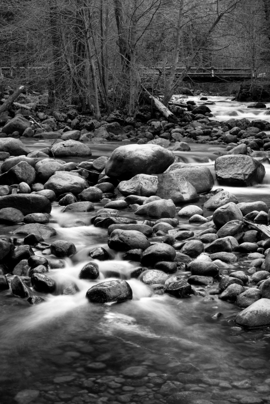 Shades Of Black & White In River Rocks
