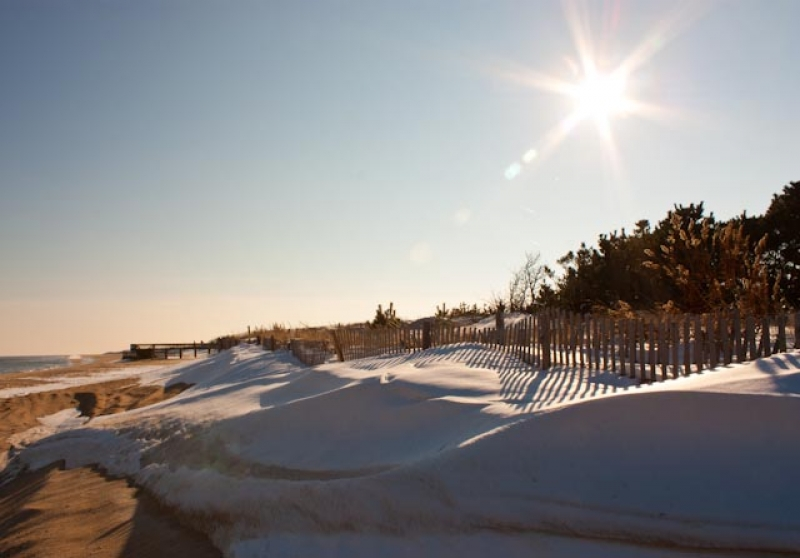 Snowy Dunes At Christmas