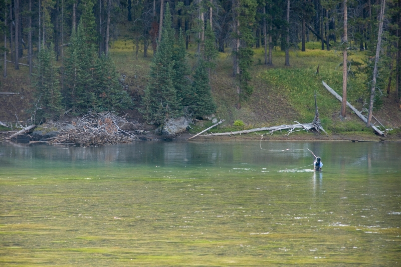 Flyfishing The Yellowstone