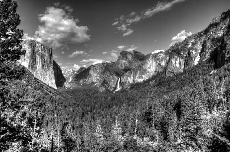Yosemite Midday Black And White