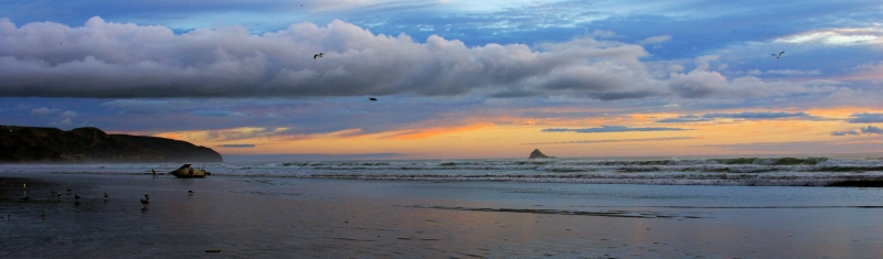 Muriwai Beach At Dusk