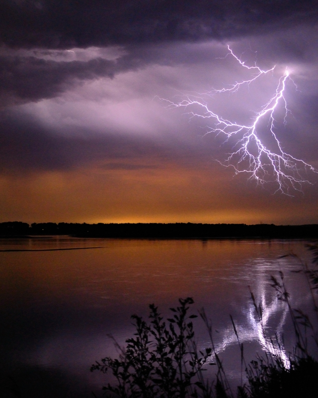 Electrifying Reflection