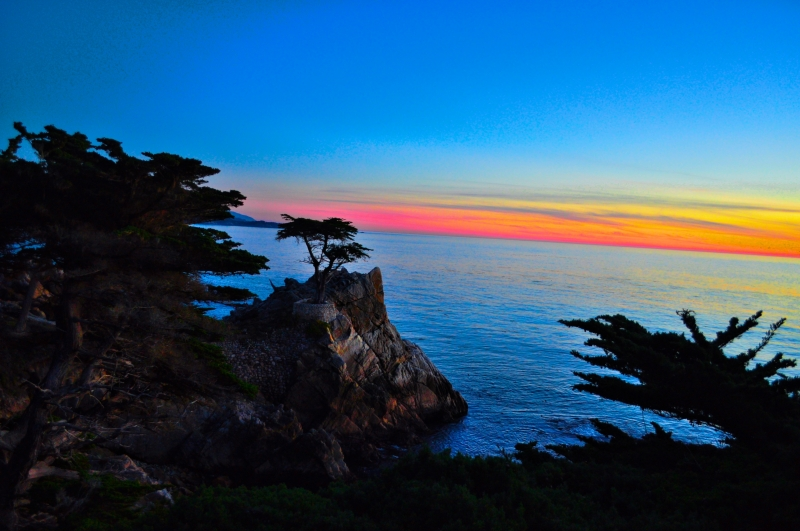 Sunset On The Lone Cypress