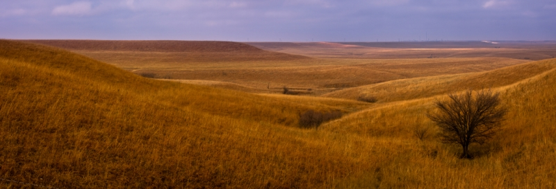 Rolling Hills Pano