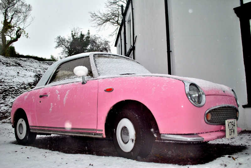 The Pink Car