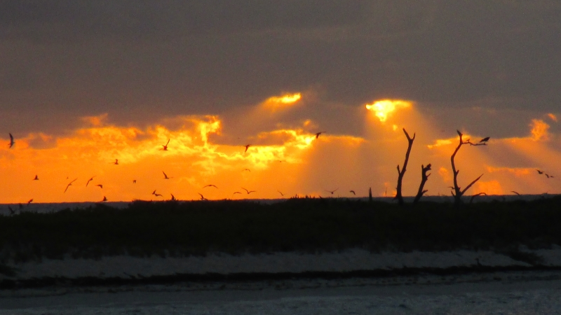 Firery Dawn At Dry Tortugas