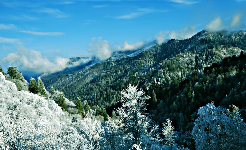 Smokies Winter Wonderland