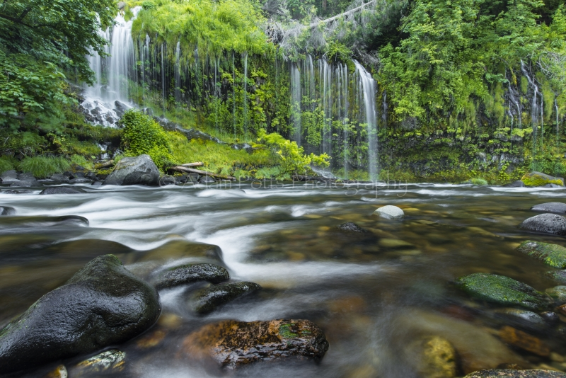 Mossbrae Falls-river Level