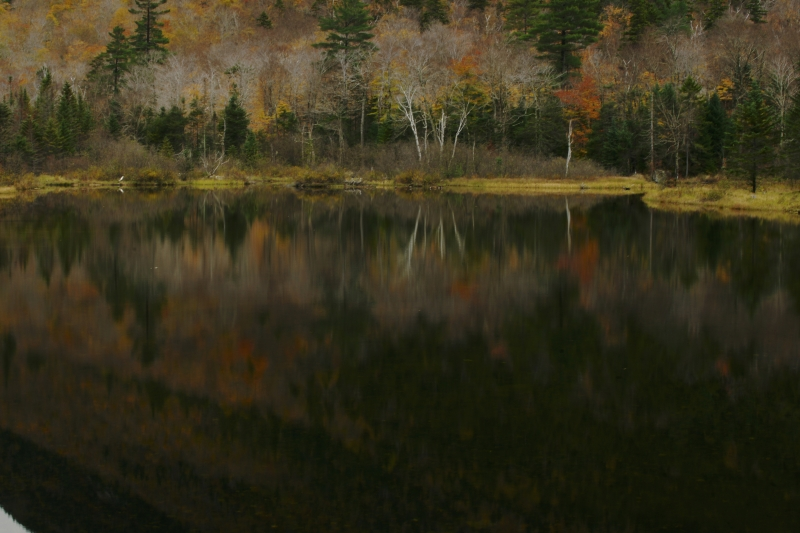 Crawford Notch Reflections
