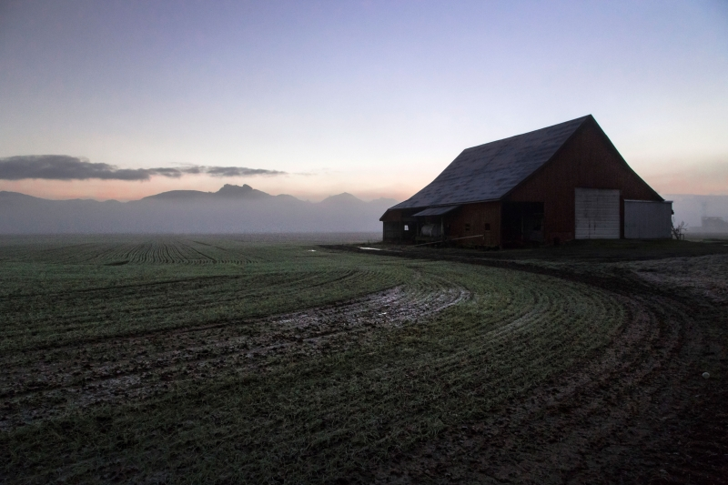 Barn And A Misty Morning