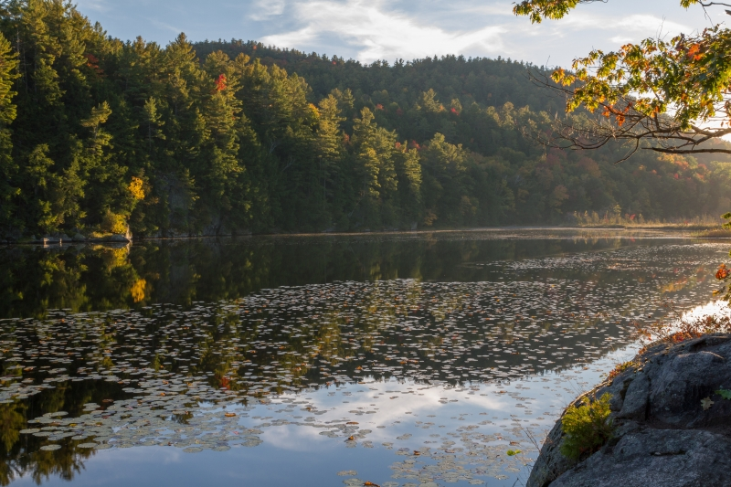 Late Afternoon At An Adirondack Pond