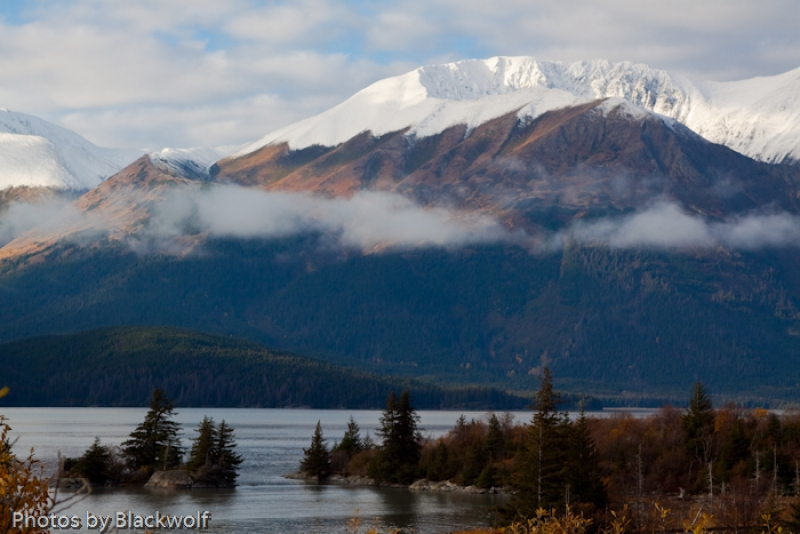 Autumn In Turnagain Arm
