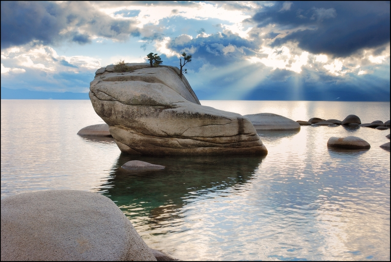 Bonsai Rock