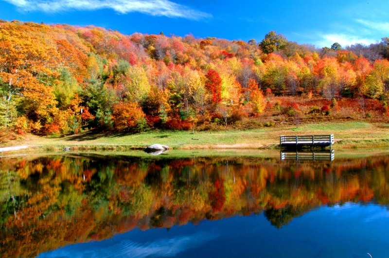 Max Patch Pond In Fall
