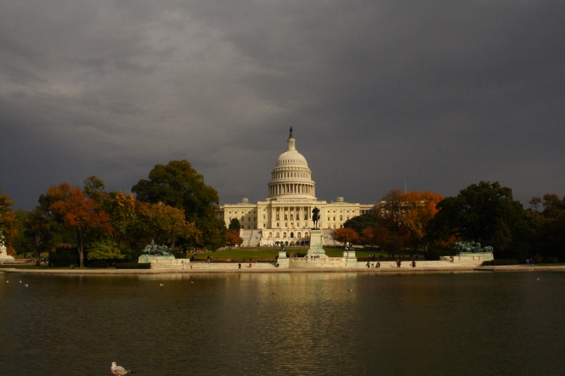 D.c. In The Fall