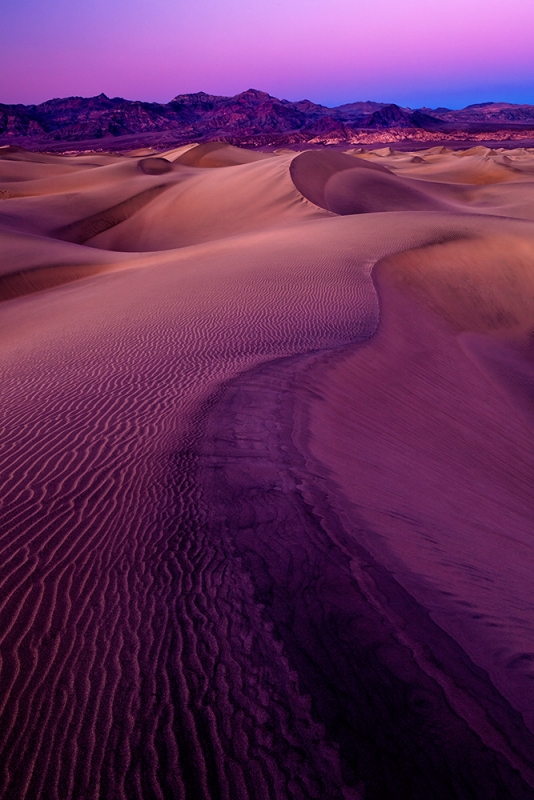 Purple Skies, Magenta Dunes
