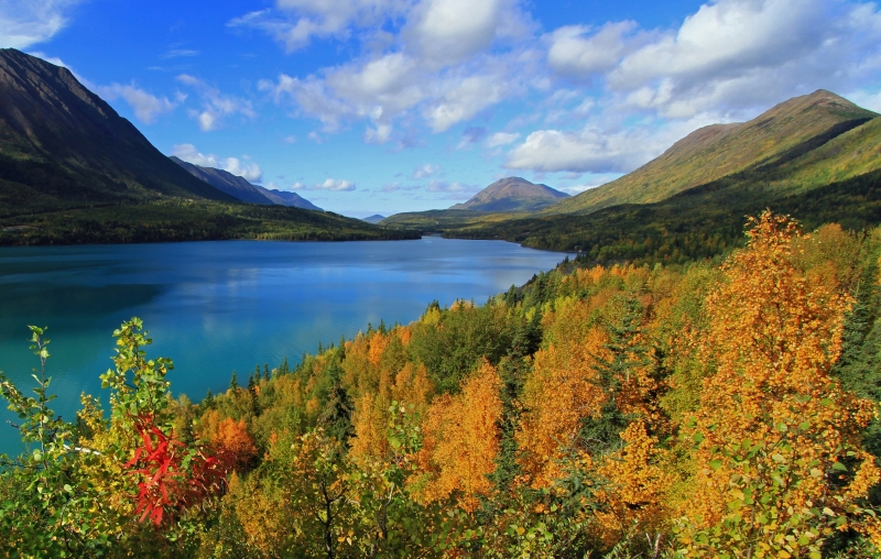 Fall Comes To Kenai Lake Alaska