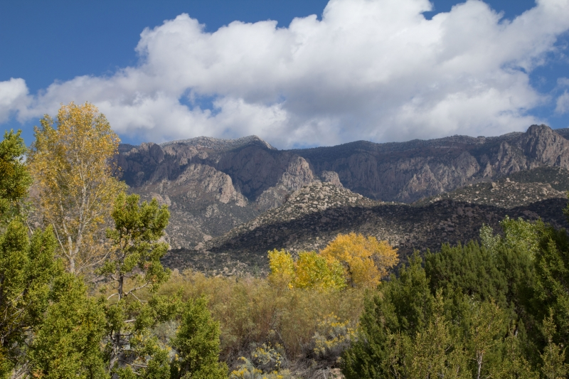 Fall Comes To The Sandia Mountains