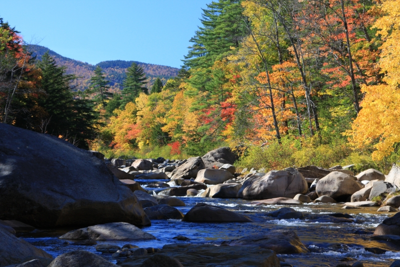 Kancamagus Colors