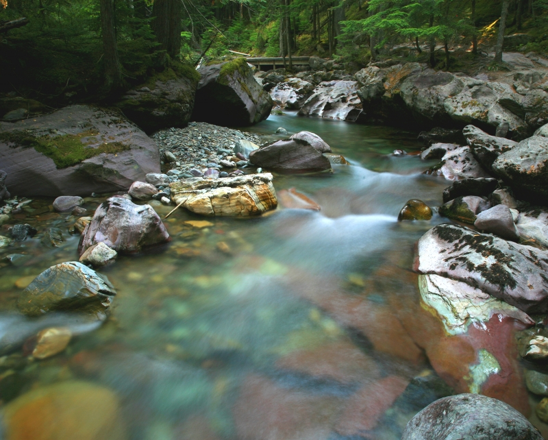Colors In The Rocks In Avalanche Creek