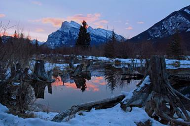 Rundle Mountain