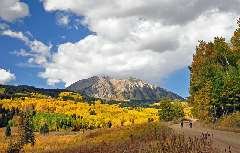 Bicycling Among The Aspens