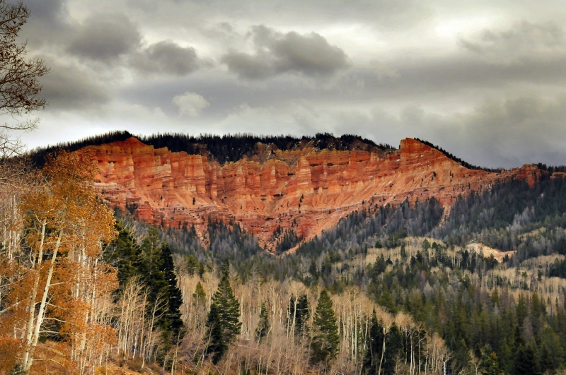 Cedar Breaks/cedar Canyon