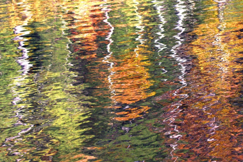Abstract Autumn Reflections-1