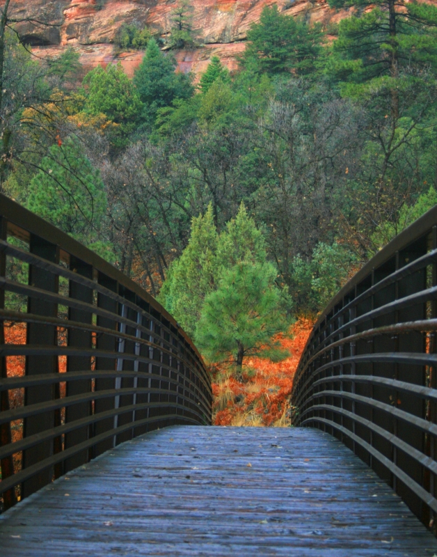 Bridge At Oak Creek Canyon