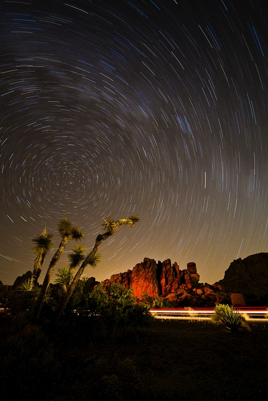 Star Tarils At Joshua Tree