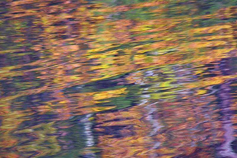 Abstract Autumn Reflections-3