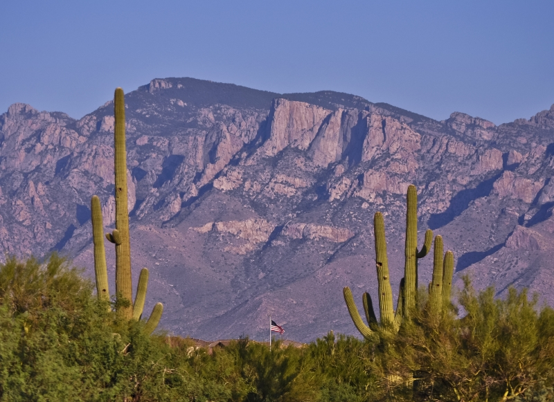 Mountains Saguaros And Flag