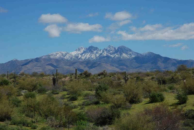Desert Mountain Snowcap