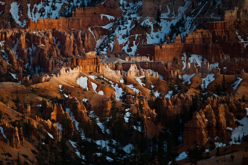 Storm Light In Bryce Canyon