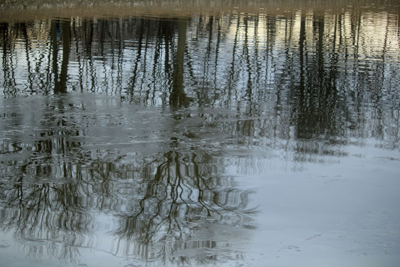 Otsiningo Pond Reflection