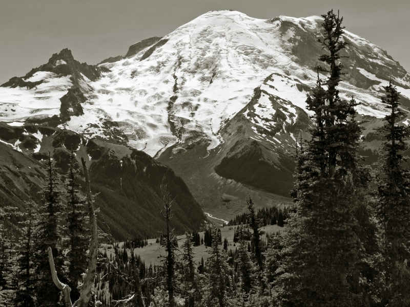 Mt Rainier From Sunrise